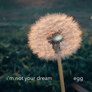 I'm Not Your Dream