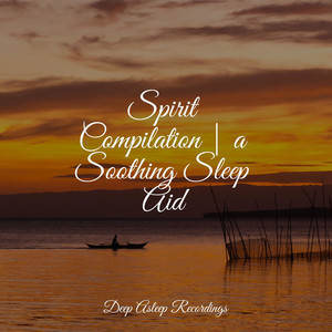 Spirit Compilation | a Soothing Sleep Aid