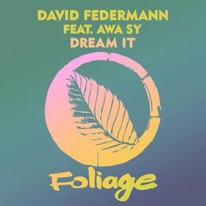 Dream It - The Layabouts Dub Mix by David Federmann, Awa Sy, The Layabouts
