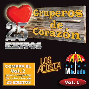 25 Exitos Vol. 1 (USA) album