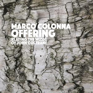 Marco Colonna profile picture
