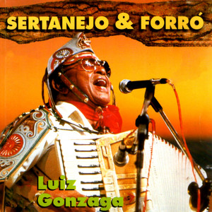 Sertanejo & Forró album