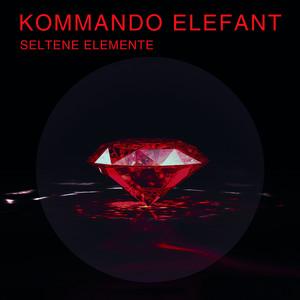 Perfect Night by Kommando Elefant