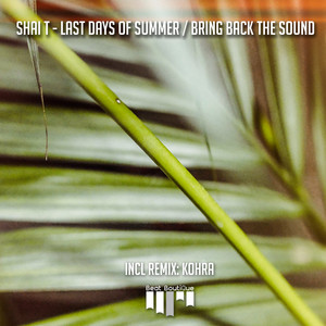 Last Days of Summer / Bring Back The Sound