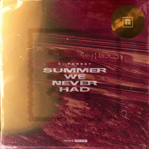 Summer We Never Had