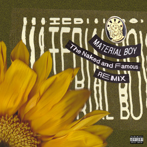Material Boy (The Naked And Famous Remix)