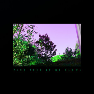 Pine Tree (Ride Slow)
