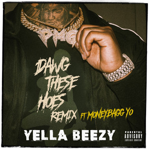 Dawg These Hoes (feat. Moneybagg Yo) [Remix]