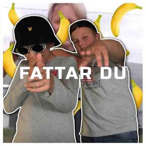 Fattar Du (Remix)