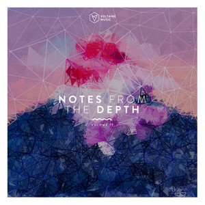 Notes from the Depth, Vol. 17