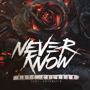 Never Know (feat. Automatic) - Single