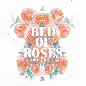 Afrojack Ft Stanaj – Bed Of Roses (Acapella)