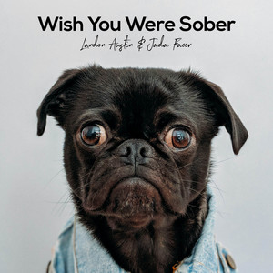 Wish You Were Sober (Acoustic)