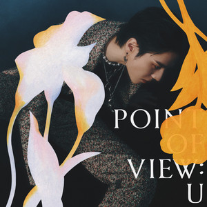 Point Of View: U