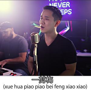 xue hua piao piao bei feng xiao xiao (一剪梅 Yi jian mei)
