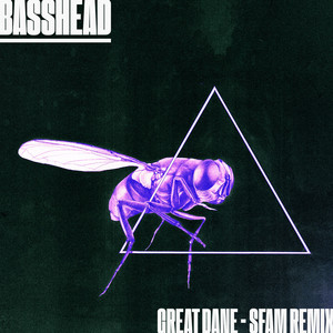 Basshead (Sfam Remix)