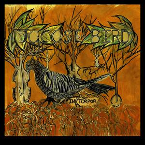 In Torpor album