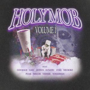 Holy Mob, Vol. 1