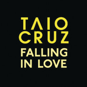 Falling In Love (Acoustic Version)