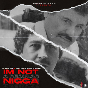 I'm Not a Regular Nigga