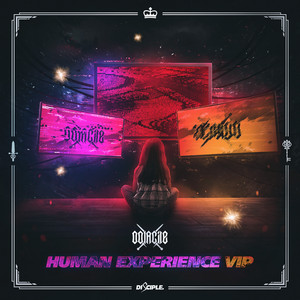 Human Experience VIP