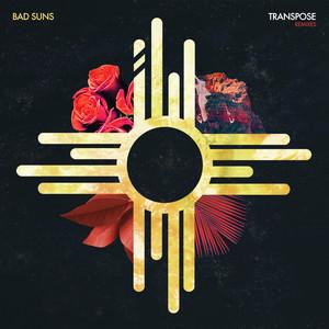Transpose (Leo Kalyan Remix)