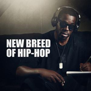 New Breed of Hip-Hop album