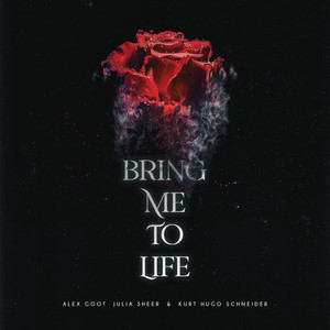 Bring Me To Life (Acoustic)