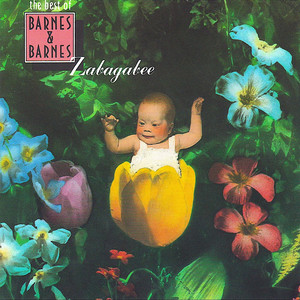 Zabagabee - The Best of Barnes & Barnes album