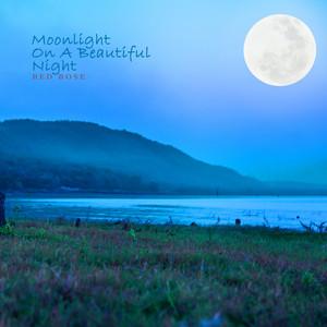 Moonlight On A Beautiful Night