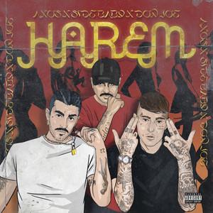 Harem cover art