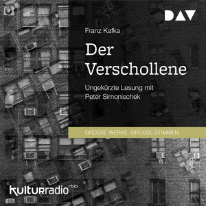 Der Verschollene (Ungekürzt) Audiobook