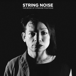 Two Kinds Of Noise by Eric Lyon, String Noise