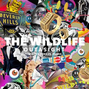 The Wild Life (Mister Freeze Remix)