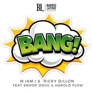BANG! (feat. Snoop Dogg & Harold Flow)