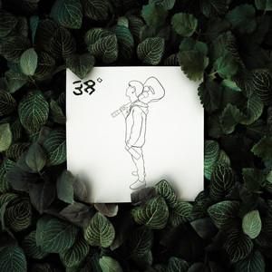 38° - Walls