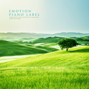 Study Music Collection For A Calm Mind