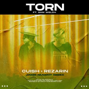 REZarin, Cuish feat. Sam Welch – Torn (Studio Acapella)
