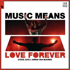 Music Means Love Forever cover art