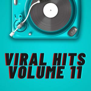 Viral Hits Volume 11