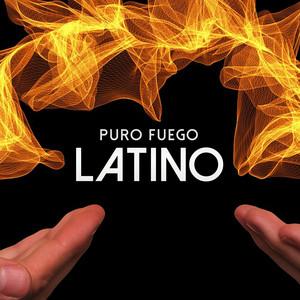 Puro Fuego Latino