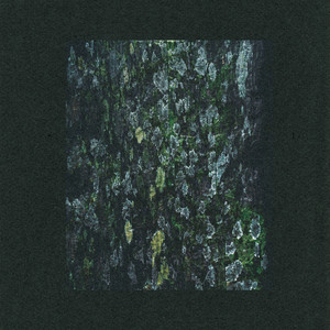 The Walker / Kilter (Remixes)
