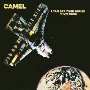 Ice by Camel
