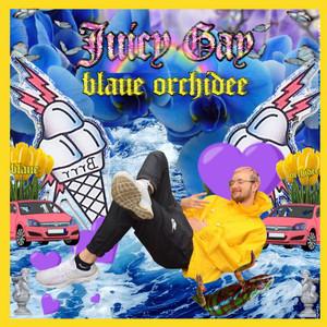 Blaue Orchidee album