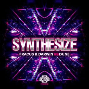 Synthesize - Radio Edit by Fracus & Darwin, Dune