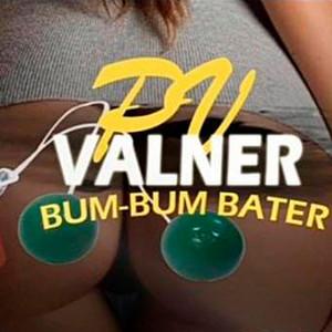 Valner Pv
