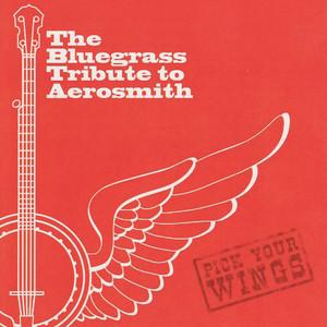 The Bluegrass Tribute to Aerosmith album