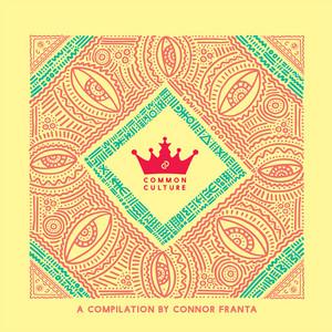 Common Culture, Vol. 3 (Edited Version) album