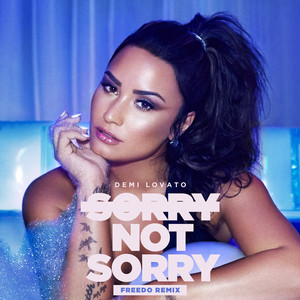 Sorry Not Sorry (Freedo Remix)