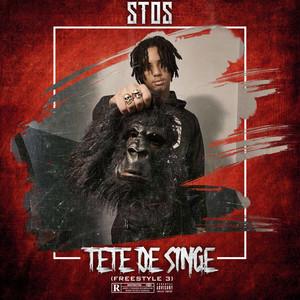 Tête de singe (Freestyle3) by Stos